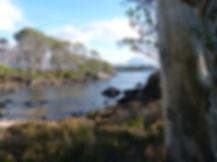 The perfect highland summer. Loch Maree