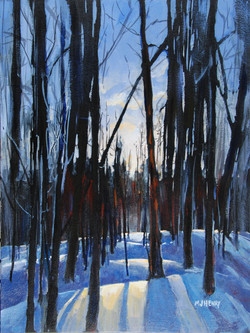 Bachelor Trail (sold)