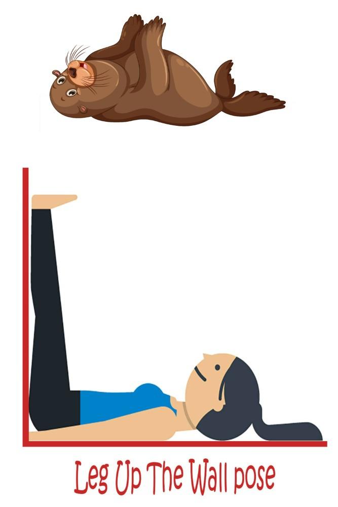 turtle-pose-yoga