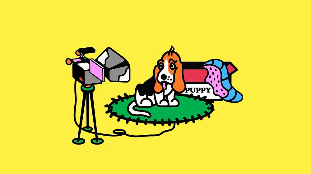 Dog filming a video