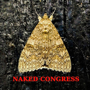 Naked Congress