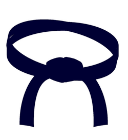 Midnight Blue Belt