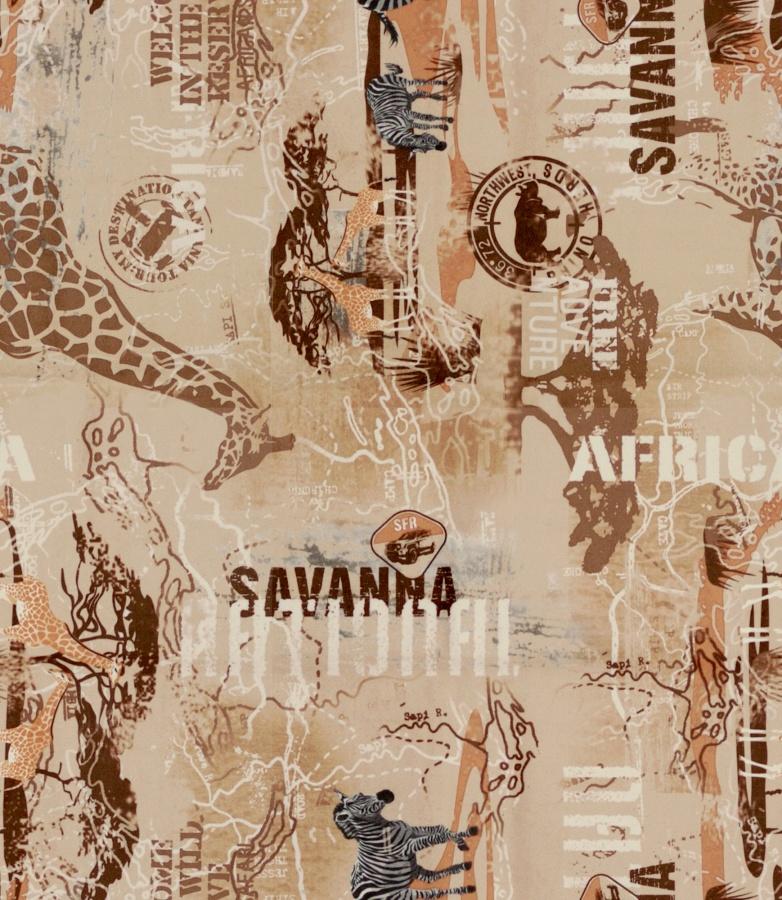 africa01_1900x900