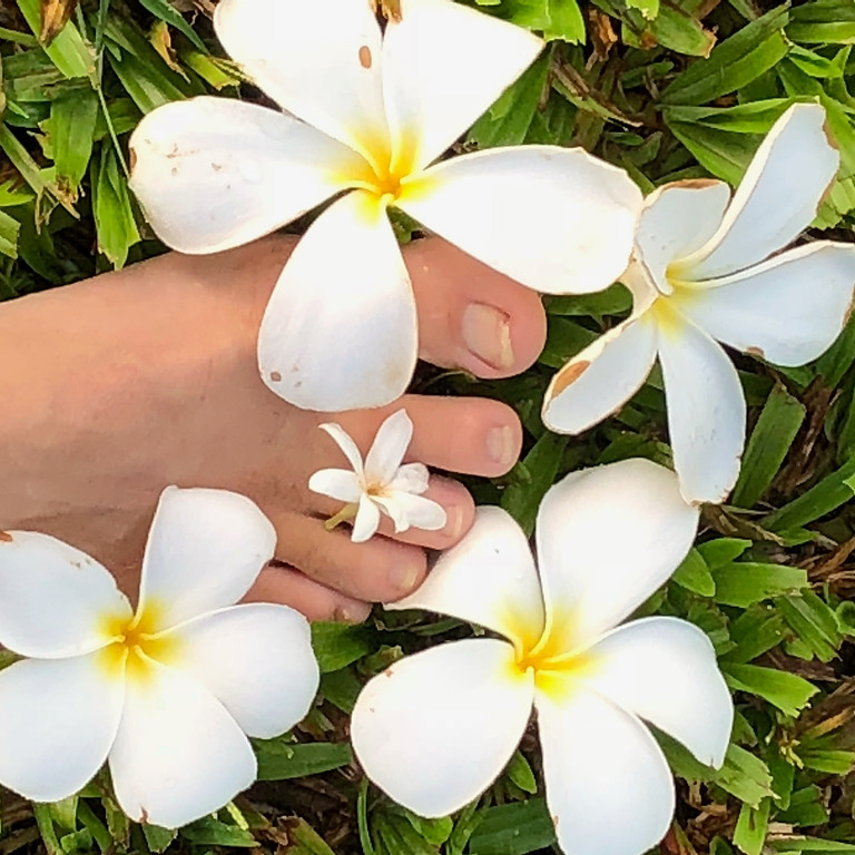 KAHI LOA MasterClass - A Touch of Hawaiian Magic / 4-Day Instructor Certification Course, Kauai, HI
