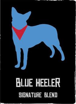 blueheeler_large