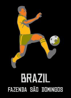 brazil_large