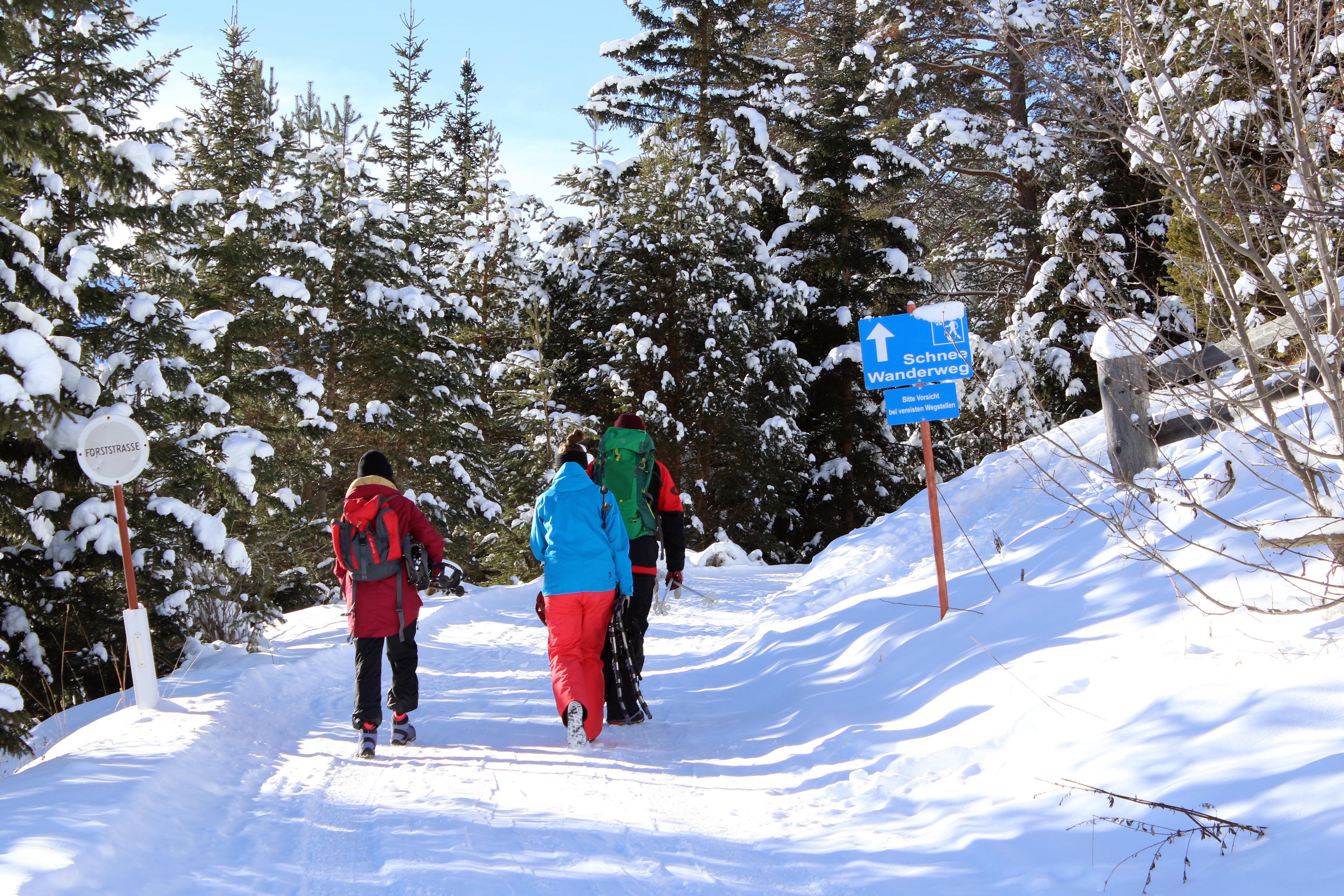 Gemeinsame Winterwanderung Berghof