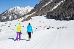 Winterwandern in der Tschey