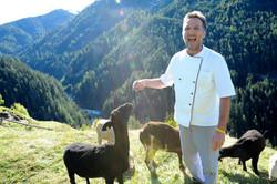 Chef Toni bei seinen Schafen