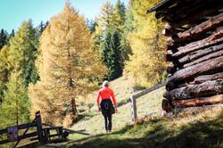 Herbstwanderung in der Tschey