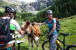 Mountainbiken beim Anton-Renk-Fall