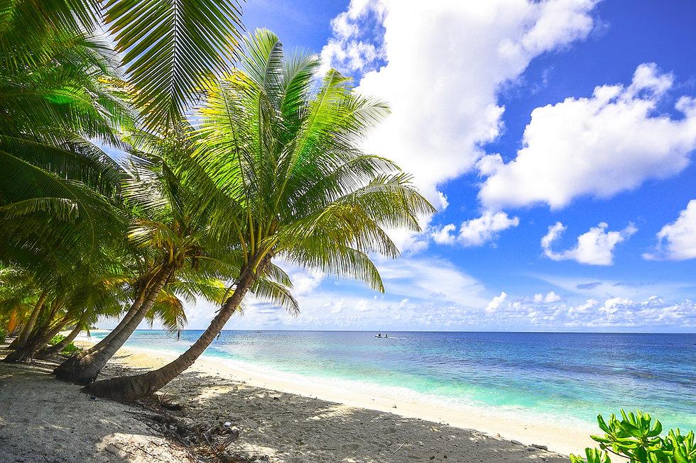 beach-1449767.jpg