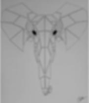 Elephant-Original.PNG
