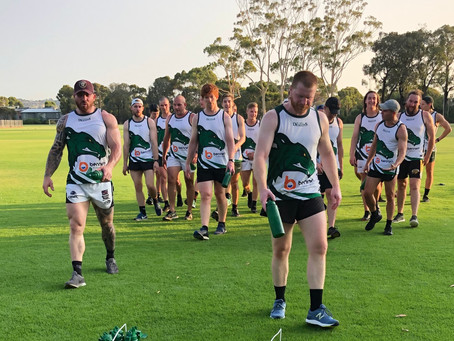 The Dragons 2020 training season begins