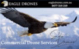 Eagle-drones_web.jpg