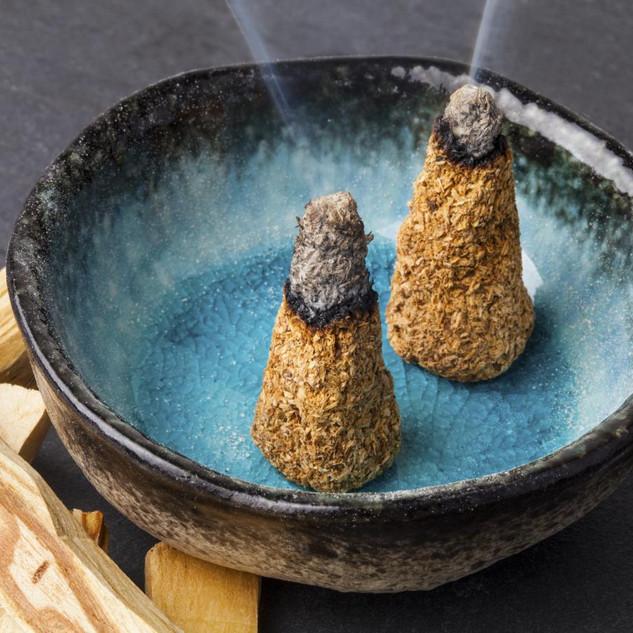 mini_palo santo incense.jpg