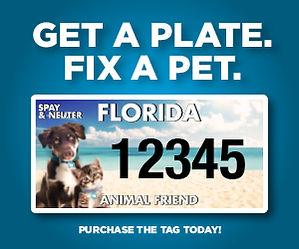 Get a plate Fix a pet.jpg