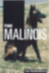 The history of the Malinois