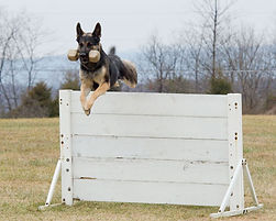 Kwenta-Jump.jpg
