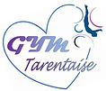 Logo Tarentaise 6.jpg