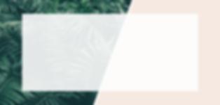 website banner 2.png