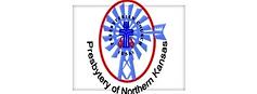 pnk fake logo.png