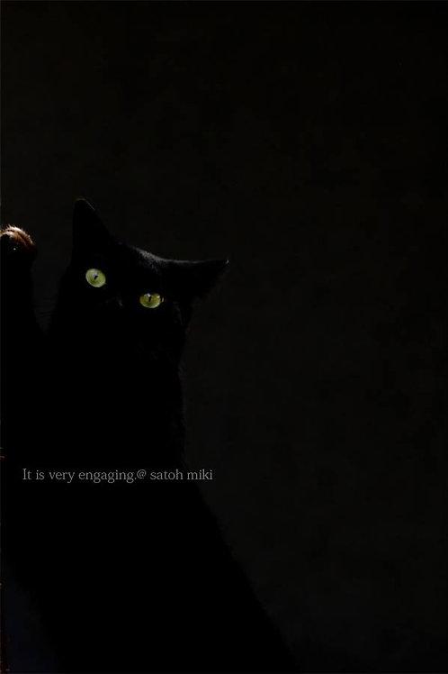 サトウミキ ポストカード「It is very engaging」