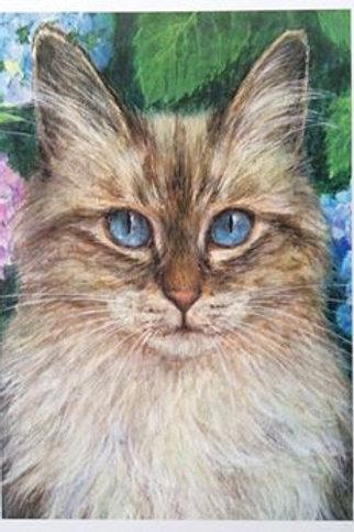 Cimi cat painter ポストカード「猫と紫陽花」