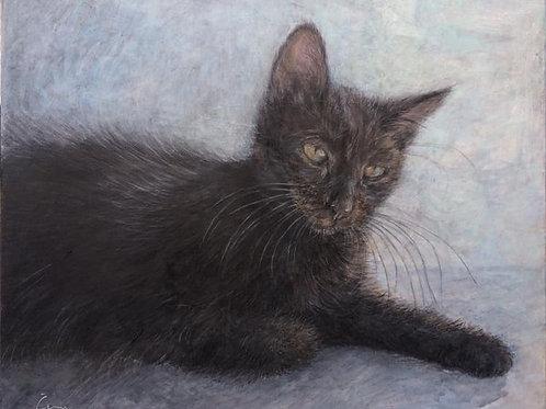 Cimi cat painter ポストカード「Nelsom(ネルソン)」