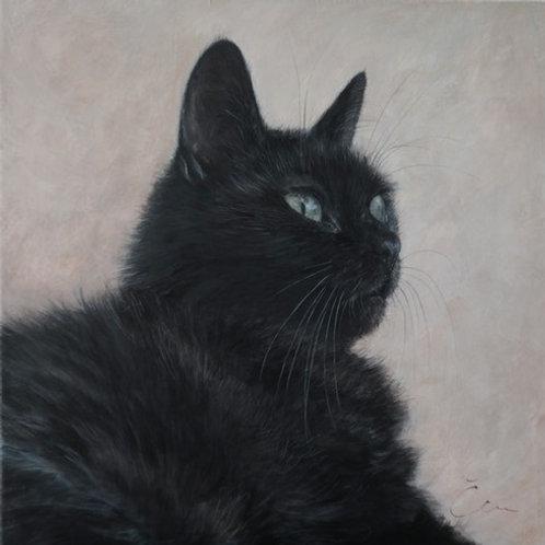Cimi cat painter ポストカード「特別な猫(くろ)」