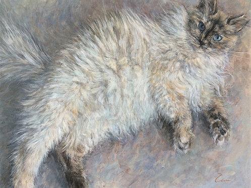 Cimi cat painter ポストカード「FUFU(ふふこ)」