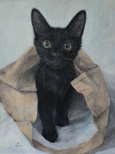 Cimi cat painter ポストカード「La(ラー)」