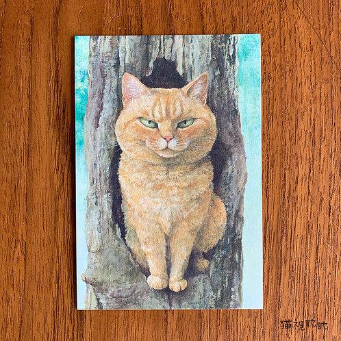 『ねこはるすばん』ポストカード「木」