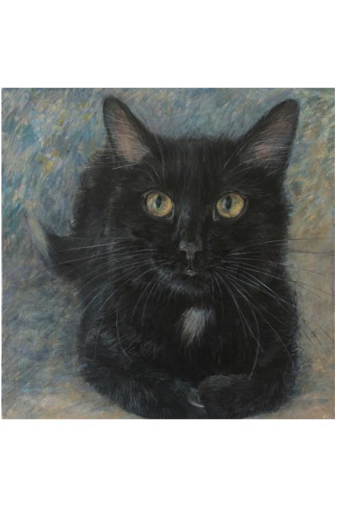 Cimi cat painter ポストカード「サレム(Salem)」