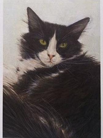 Cimi cat painter ポストカード「Matus(マトゥシュ)」