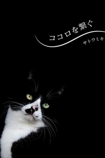 サトウミキ 写真集『ココロを繋ぐ』