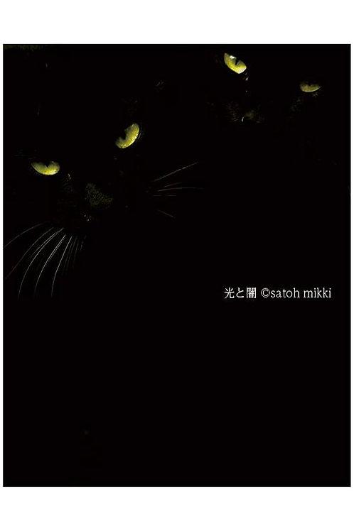 サトウミキ ポストカード「光と闇」