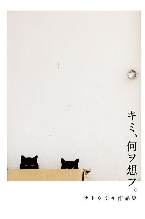 サトウミキ 作品集『キミ、何ヲ想フ』