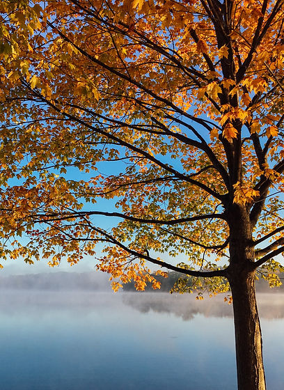 Bench%20by%20the%20lake%20on%20an%20autumn%E2%80%99s%20day_edited.jpg