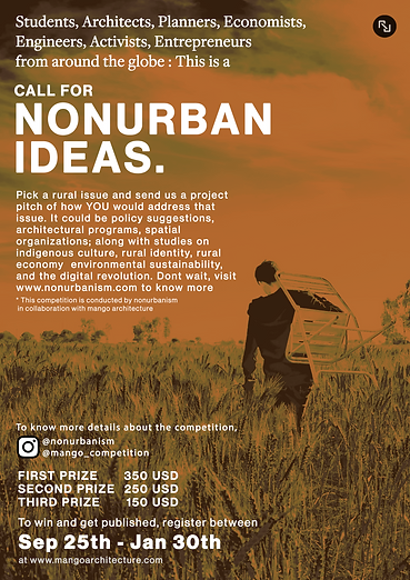 Poster-Call for nuideas 2021- January 13