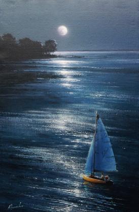 Night boat trip