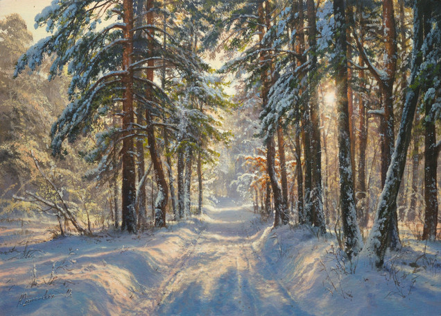 Morning in the winter forest