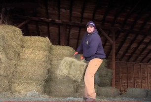 Warehouse Worker Loading Hay