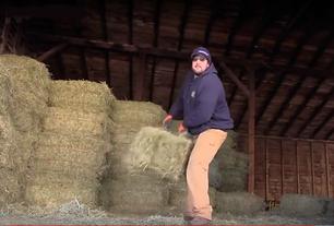 Warehouse Worker Loading Hay