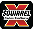 Squirrel-X-logo.png