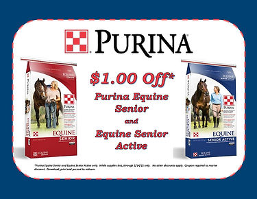 $1.00 off equine senior.jpg