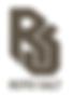 Roto Salt Logo