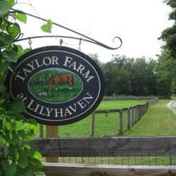 Taylor_Farm_sign_Foliage