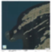 SR2_1of12_Image.jpg