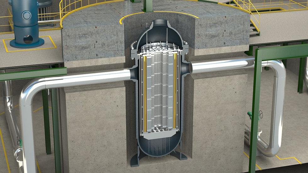Reactor Internals.jpg